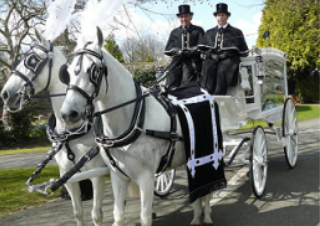 Moores Traditional Funeral Directors - Horse-Drawn Hearse